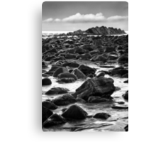Rock Colony Canvas Print