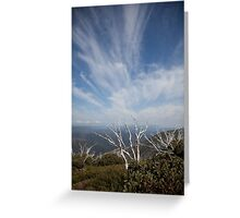 Hotham Spring Greeting Card