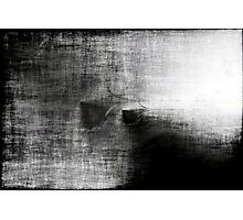 Anatomy of Greys Photographic Print