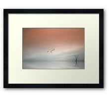 Flight of the Swans Framed Print