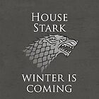 House Stark iPhone Case by alexandramarieg