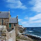 Coastline at Anstruther by The Creative Minds
