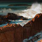 Murramarang wave  by Nick  Taylor
