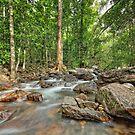 Florence Falls Creek Landscape by AllshotsImaging