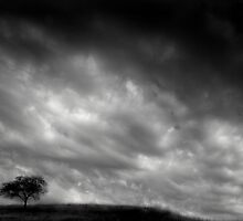 Before the Rain by Nate Welk