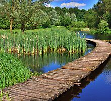 Walkway near the Stream Wâldfeart by Jo Nijenhuis