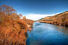 Autumn Beside the Clutha River by Christine Smith