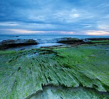 Redgate Beach- Western Australia by Chris Paddick