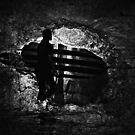 Secret Passage by saseoche