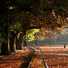 Autumn walkway - iPhone case by MikeO