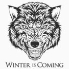 House Stark Banner by kuzzie