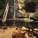 """Snug Falls"" ∞ Snug, Tasmania - Australia by Jason Asher"
