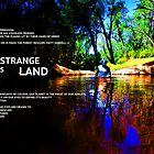 Stranger in his Strange Land by Salamdar