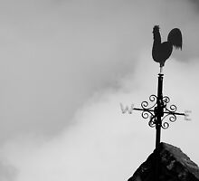 Weather Vane by Sammy Holmes