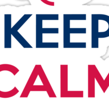 Keep Calm and Vote  Sticker