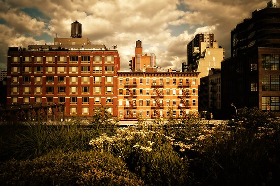 Storm Clouds Over the Chelsea Skyline - High Line - New York City by Vivienne Gucwa