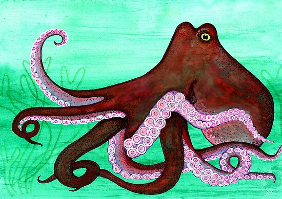 Octopus vulgaris by joancaronil