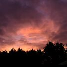 Second Evening Shadow SunDown Uk by troffle24