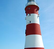 Smeaton's Tower by Alex Carpenter - Beare
