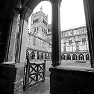 The Cloisters of Durham Cathedral by Elizabeth Tunstall