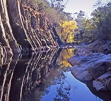 The Canyon on Ovens River by Roger Neal