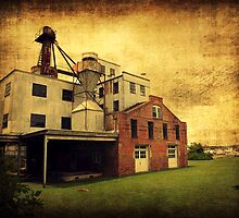Haven's Mill by Lea  Weikert