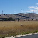 Windfarm - Buangor by davidjc