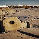 Mussel Graveyard by CollinScott