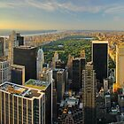 Central Park Sunset from the Top of the Rock in New York by Zoltán Duray