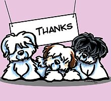 Coton de Tulear Thank You Cards by offleashart