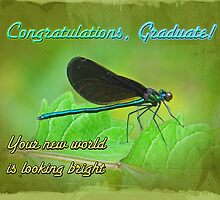 Congratulations Graduate - Ebony Jewelwing Damselfly by MotherNature