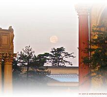 Moon Mist at the Palace by David Denny