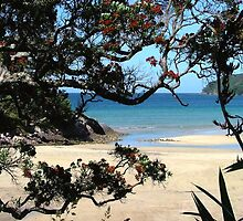 A peak of Pa Beach, Great Barrier Island............! by Roy  Massicks
