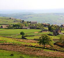 Colne Valley by Stephanie Owen