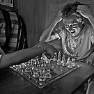 Check Mate! by John Spies
