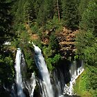 Burney Falls by James Eddy