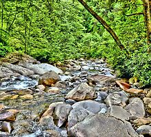 Mountain Stream (HDR) by Jeff Ore