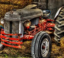 Ford Tractor by Steve Walser