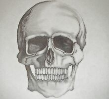 Shaded Skull Drawing by claire25