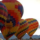 Balloon Festival (5) by Nicole  Markmann Nelson