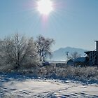 Winter Light by Nicole  Markmann Nelson