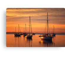 In morning light - Geelong Canvas Print