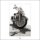 Al's Harley Road King by Don Bailey