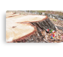 The lumberjack Canvas Print