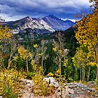 High In the Rockies by Kathy Weaver