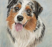 Australian Shepherd Dog by LouiseJarvisArt