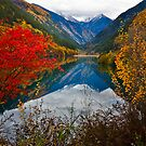 Autumn in Mirror Lake, Jiuzhaigou by Daniel  Chui