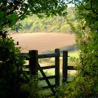 Kissing gate by FelicityB