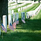 Arlington Cemetery, Memorial Day, 2011 by Zach Chadim
