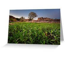 Green Front Greeting Card